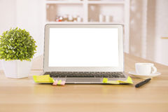 Empty laptop and plant stock photography