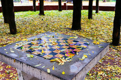 Leaf covered chess board Royalty Free Stock Photo