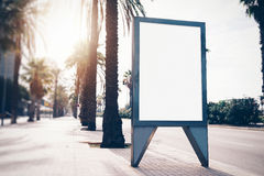 Empty lightbox on the street of a city. Vertical Stock Photos