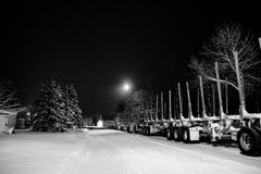 Empty logging trailers Royalty Free Stock Photography