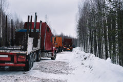 Empty long vehicles on winter road among forest Stock Image