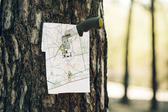Empty map stuck into a tree with a knives royalty free stock image