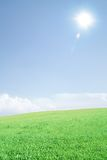 Empty meadow with sun Royalty Free Stock Image
