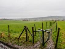Empty meadows in Limburg Stock Photos