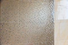 Empty modern bathroom. Interior empty modern bathroom not sanitary ware Royalty Free Stock Photos