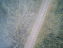 Empty mountain road in a misty morning Royalty Free Stock Images