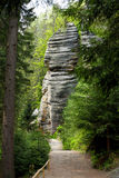Empty mountain trail in green forest with rock Royalty Free Stock Photography