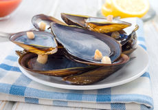 Empty mussel shells on the table Stock Images