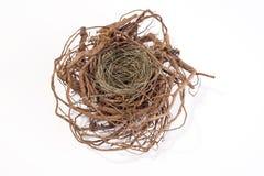 Empty nest Royalty Free Stock Photos