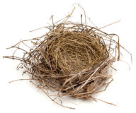 Empty Nest. An empty bird's nest on a white background Stock Photo