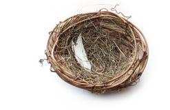 Empty Nest Stock Photo