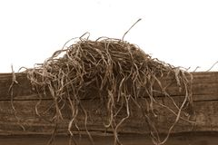 Empty nest. On wooden fence Royalty Free Stock Images