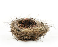 Empty nest Royalty Free Stock Images