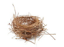 Empty Nest. Isolated on White Stock Image