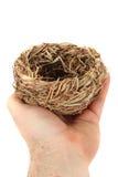 Empty nest isolated Royalty Free Stock Photography