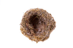Empty nest. Isolated on white background Stock Photos
