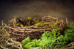 Empty nest with moss. Empty bird's nest with moss and hay Royalty Free Stock Photos