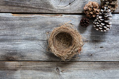Empty nest on old wood for symbols of sustainable winter. Empty nest and fir cones on old wood background for sustainable symbols of winter, natural comfort or Royalty Free Stock Photo