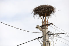 Empty nest of storks on an lamppost Royalty Free Stock Images