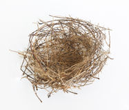 Empty nest. Royalty Free Stock Photos
