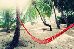 Empty net hammock at tropical beach resort. Island Royalty Free Stock Photo