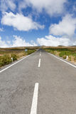 Empty never ending road Royalty Free Stock Photos