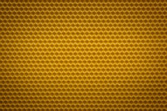 Empty new honeycomb. Beautiful empty new honeycomb background Royalty Free Stock Photography