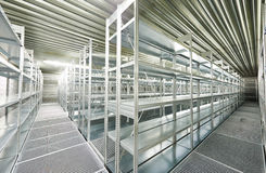 Empty new modern shelves in warehouse Royalty Free Stock Image