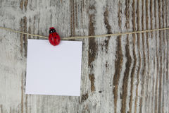 Empty note hanging with a clothespin Royalty Free Stock Photo