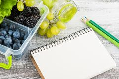 Empty notebook and berries royalty free stock photos