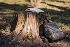 An empty notebook or diary with open pages lies on a stump in pa Stock Photo