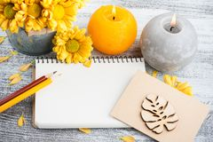Empty notebook and chrysanthemum royalty free stock photos