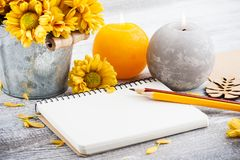 Empty notebook and chrysanthemum royalty free stock image