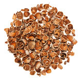 Empty nutshells Royalty Free Stock Photos