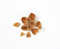 Empty nutshells on white Stock Photography