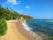 Empty ocean beach with greens and sand, Sri Lanka Stock Image