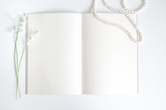 Empty old book page  with copy space Stock Photography