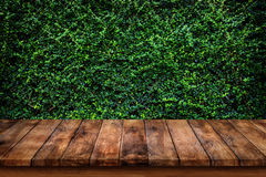 Empty old wooden table or counter with green leaves background. Stock Images
