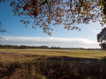 Empty open grass land farm land scene plain agriculture. Essex; england; uk Stock Images