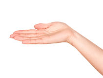 Empty open hand Royalty Free Stock Photography