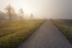 Empty open road at foggy morning