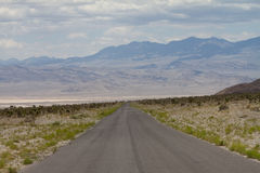 Empty open road in Nevada approaching Mountains Royalty Free Stock Images