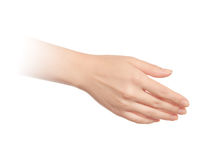 Empty open woman hand Royalty Free Stock Image