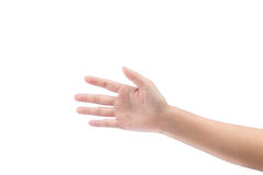 Empty open woman hand. On white background royalty free stock images