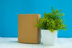 Empty Package brown cardboard box or tray and little decoration tree in white vase on bright white wooden table with blue wall stock photography