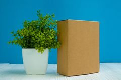 Empty Package brown cardboard box or tray and little decoration tree in white vase on bright white wooden table with blue wall royalty free stock photo