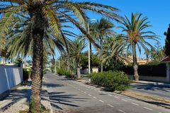 Empty palm-lined street of Cabo Roig. Costa Blanca Stock Photos