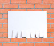 Empty paper ad loose leaves. Isolated on a red brick wall backgr Stock Photo