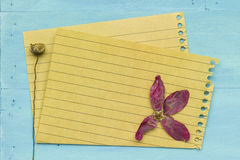 Empty paper with decoration Royalty Free Stock Photography