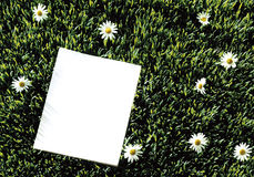 Empty paper on green meadow Stock Images